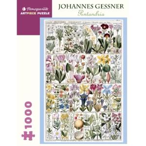 Johannes Gessner Pentandria Puzzle 1000 Stukjes | Cosmetica-shop.com